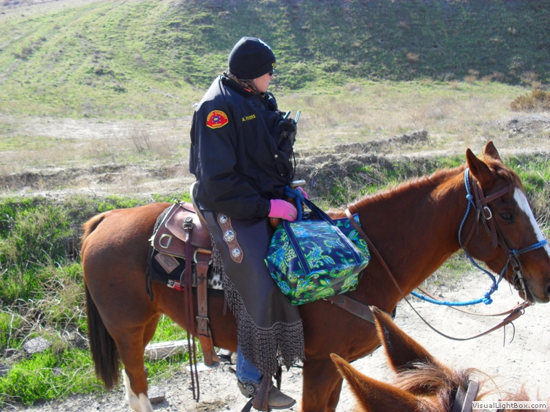 Training Kern County Sheriff S Mounted Search And Rescue